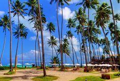 Estoy participando por un viaje TODO INCLUIDO al Resort Grand Oca, Maragogi, Brasil. Deseénme suerte!