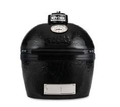Primo Oval JR 200 - Quality Fireplace & BBQ