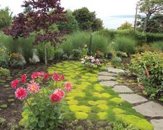 Eclectic Landscape Design, Pictures, Remodel, Decor and Ideas - page 30