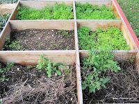 Φτιάχνω μόνος μου: Δεκέμβριος στο αγρόκτημα Outdoor Structures, Garden, Plants, Garten, Lawn And Garden, Gardens, Plant, Gardening, Outdoor