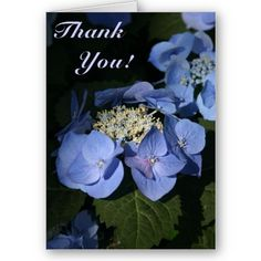 Thank You! Card from http://www.zazzle.com/blue+hydrangea+thank+you+cards