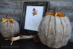 DIY Faux Fur Covered Pumpkins For Fall And Winter Decor - Shelterness Diy Pumpkin, Pumpkin Crafts, Battery Powered Christmas Lights, Faux Pumpkins, Plastic Pumpkins, Craft Fur, Fall Diy, Pumpkin Decorating, Fall Decor