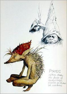 Free Poster Faeries Deluxe ED Alan LEE Brian Froud Fairy Fairies Faerie | eBay