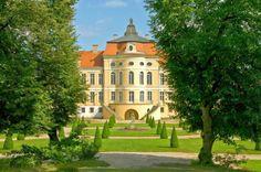 Pałac w Rogalinie, Wielkopolska