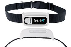 Fetch GPS Pet Tracking Collar Reviews - Do you have a dog at home? If you do, then probably you are aware of this fact. It welcomes you with extreme joy and jumps around you as if you are the only person on earth. Imagine how sad you will be if this pet suddenly gets lost one day. This is where technology steps in. Fetch GPS pet...