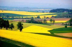 Innviertel Quelle:SN/ silverstar 6-5-2015 Painting Inspiration, Austria, Golf Courses, Pictures, Linz, Landscapes