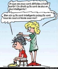 Images Fun N°8076 - Les poux intelligents