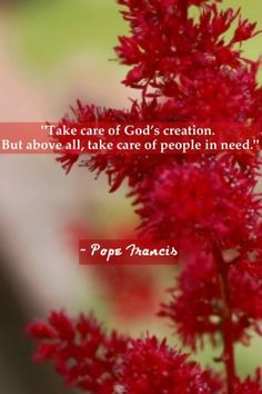 ~ Pope Francis...