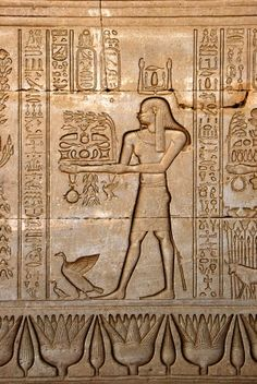 Ancient Egyptian sunken relief depicting man carrying offerings to the goddess Hathor in Denderah, built under the reign of Pepi I (ca. 2250 BC)