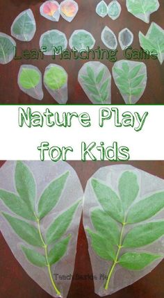 Make a Leaf Matching Game out of real leaves- great Nature study and play for…