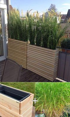 Plant tall lemongrass in the tall wooden planters for the balcony . - - Plant tall lemongrass in the tall wooden planters for the balcony garden. Tall Wooden Planters, Bamboo Planter, Patio Decorating Ideas On A Budget, Small Patio Ideas On A Budget, Ideas For Small Patios, Porch Decorating, New Build Garden Ideas, Cheap Patio Ideas, Garden Design Ideas On A Budget