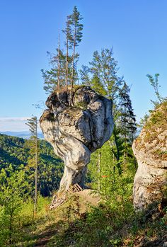 Budzogáň - Strážovské vrchy Heart Of Europe, Wilderness, Mount Rushmore, Lion Sculpture, Earth, Country, Nature, Paisajes, History