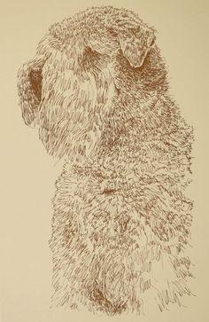 Soft Coated Wheaton Terrier coffee dog Art      8.5x11 glossy photo print
