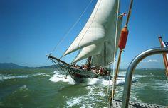 The Californian Apple Service, Sailing Ships, Boat, Dinghy, Boats, Sailboat, Tall Ships, Ship