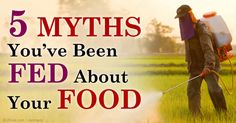 """Andre Leu, author of the book """"The Myths of Safe Pesticides,"""" explains that toxic pesticides are everywhere but only a few are tested for safety. http://articles.mercola.com/sites/articles/archive/2014/12/28/safe-pesticides-myth.aspx"""
