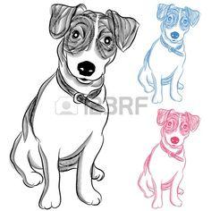 An image of an Irish Jack Russell Terrier dog.