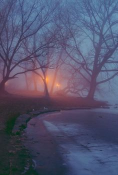 Lights in the Fog Beautiful World, Beautiful Places, Dark Photography, Christmas Aesthetic, Belleza Natural, Beauty Art, Dark Paradise, Pretty Pictures, Aesthetic Wallpapers