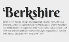 Berkshire http://www.google.com/webfonts/specimen/Berkshire+Swash