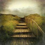The+iPhone+Landscape+Photography+of+Mariko+Klug