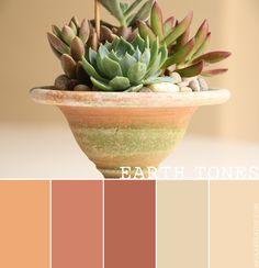 an earth-inspired color palette // warm, earthy tones Bedroom Colour Schemes Warm, Bedroom Colors, Bedroom Inspo, Earthy Color Palette, Colour Pallette, Echeveria, Earth Tone Bedroom, Cactus E Suculentas, Paint Color Palettes