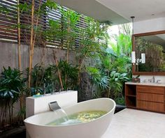 Bathroom turned into a jungle with plants, trees and shutters