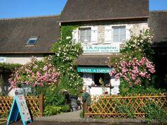 Giverny - Façade d'un restaurant et ses rosiers en fleurs