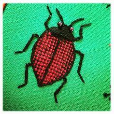 Stumpwork biller - Fungus beetle