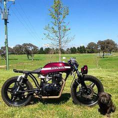 Man and woman's best friends. Honda and pup. Check out the lines on the bike with the seat and lowered headlight. Thank you Jay! Vintage Honda Motorcycles, Small Motorcycles, Custom Motorcycles, Custom Bikes, Cb 750 Cafe Racer, Modern Cafe Racer, Cafe Racer Build, Honda Cb400, Brat Cafe