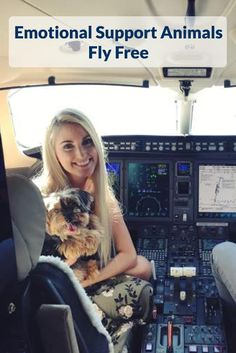 Emotional Support Animals Fly Free! Find out if you qualify for an ESA letter today. Esa Letter, Emotional Support Animal, Toy Fox Terriers, Healthy Pets, Therapy Dogs, Animal Projects, Service Dogs, Dog Care, Dog Houses