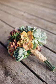 Rosette / Wedding Succulent Cuttings for Bouquets - The Succulent Source