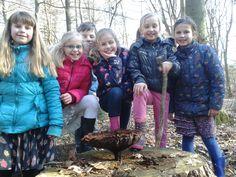 Kids vinden dennenvoetzwam met hoed van wel 30 cm op de Nijemirdumer heide.