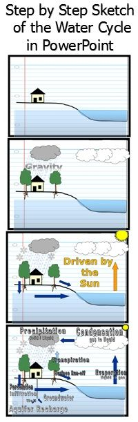 I love using this step by step drawing of the Water Cycle to explain concepts in science. Each slide reveals a small portion of the diagram. At the end, each student has a nice visual in their journal. Questions and built in quiz always follow.