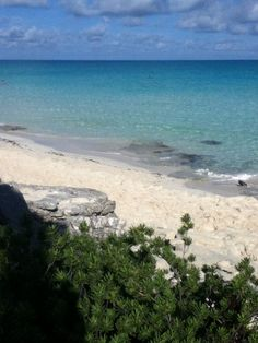 Plage du Valentin Perla Blanca à Cayo Santa Maria, Cuba - Janvier 2015 Cayo Santa Maria, Cuba, Vacations, Paradise, Places To Visit, Ocean, Beach, Water, People