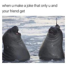 Me and my friend in class when we make jokes about the teacher