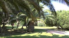 Colonna Country & Sporting Hotel - ITI Colonna Hotels & Resort