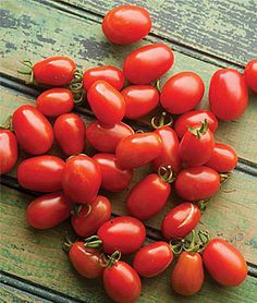 Cherry Roma Tomato Seeds and Plants, Vegetable Gardening at Burpee.com