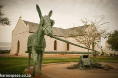 Upington - Donkey Monument at the Old Dutch Reformed Church - Northern Cape - South Africa. Sa Tourism, Cape Dutch, Church Building, Walkabout, Cathedrals, Countries Of The World, School Projects, Cape Town, Live