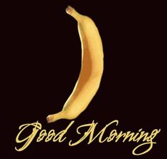 Good Morning GIF - GoodMorning - Discover & Share GIFs