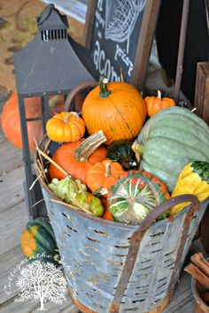 Autumn vintage olive bucket!!! Bebe'!!! Love this vintage olive bucket filled with pumpkins and goards!!!  Great fall decoration!!!