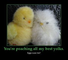 Easter funny puns-chicken puns