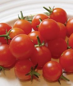 Tomato Sweet Baby Girl Hybrid
