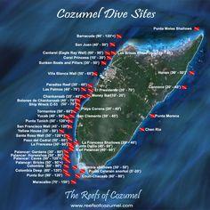 Spectacular Dive Sites You Have to See to Believe Plusieurs forfaits de plongée sous-marine offerts au Allegro Cozumel Resort de la chaîne hôtellière Occidental. Cozumel au Mexique, est un endroit de rêve pour les amateurs de plongée qu'ils soient débutants ou expérimentés. #scubadiving #snorkeling #cozumel