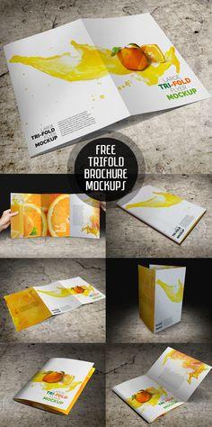 Free Large Tri-Fold Brochure Mockup PSD