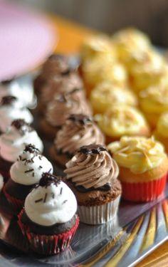 sacher a schwarzwald cupcakes