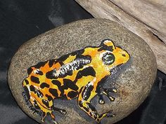 HAND-PAINTED-YELLOW-TOAD-FROG-ROCK-STONE-FOLK-ART-GREAT-FOR-COLLECTORS-5