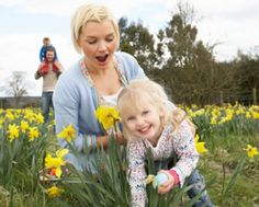 Host a community Easter egg hunt..... Putting together a traditional Easter egg hunt for your family can be a ton of fun, but organizing a community-wide Easter egg hunt for your neighborhood can seem like a daunting task. With these simple tricks and tips, you can easily take the stress out of a fun day in the sun with your neighbors.