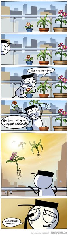 Plants deserve better…