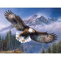 Join our diamond painting movement. Paint with diamonds here. DIY Diamond painting is just great wholesome family fun. Spectacular diamond painting by diamondxpres. Eagle Painting, Diy Painting, Tattoo Aigle, Eagles, Nicolas Vanier, Eagle Pictures, Eagle Art, Mosaic Crosses, 5d Diamond Painting