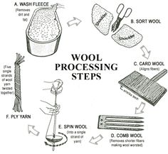 Diagram of the steps involved in the processing of Wool: WASHING, SORTING, CARDING, COMBING, SPINNING, PLYING.