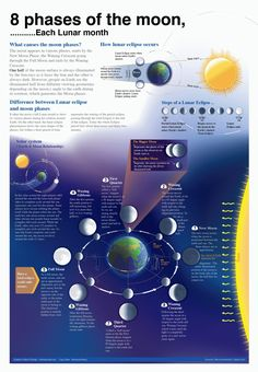 8 Phases of the Moon Infographic is one of the best Infographics created in the Science category. Check out 8 Phases of the Moon now! Earth And Space Science, Earth From Space, Science And Nature, Cosmos, Space And Astronomy, Astronomy Facts, Our Solar System, Science Fair, Science Ideas